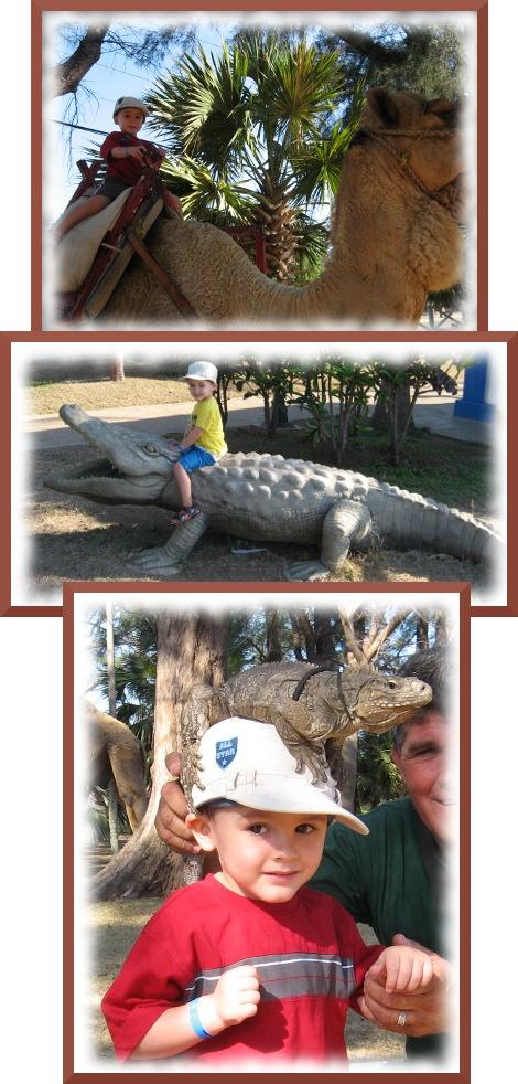 activités à Varadero